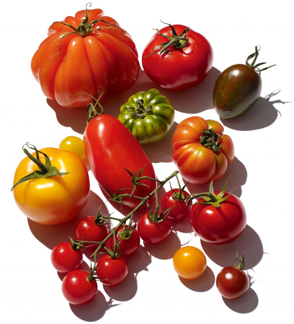 Taktische Tomate