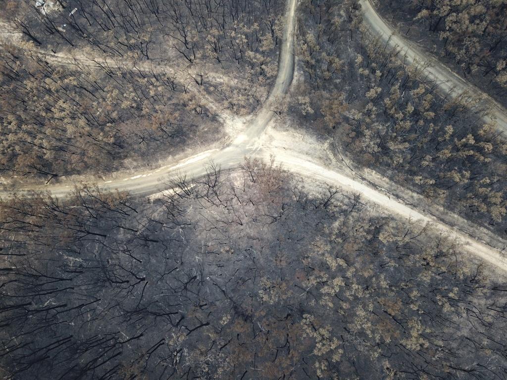 Australien kämpft mit den Folgen der Brände