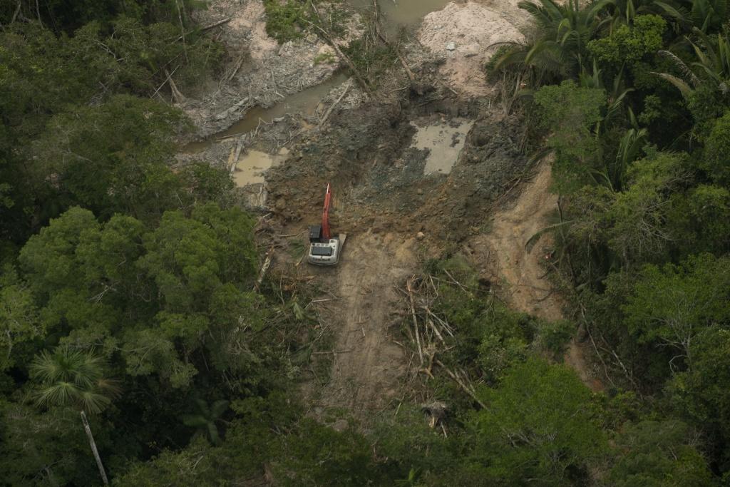 Umweltzerstörung im Schatten des Virus