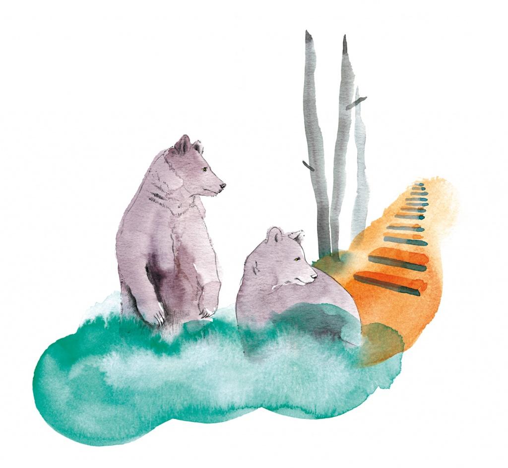 Das Problem mit den Problembären