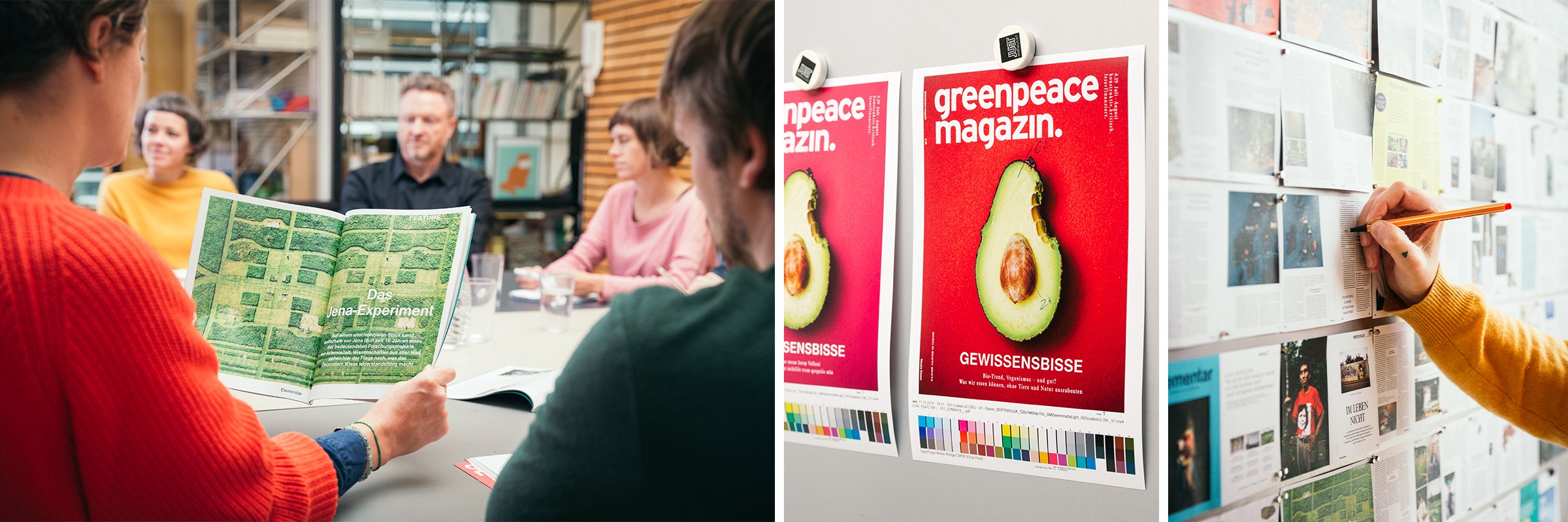 Die Greenpeace Media stellt sich vor
