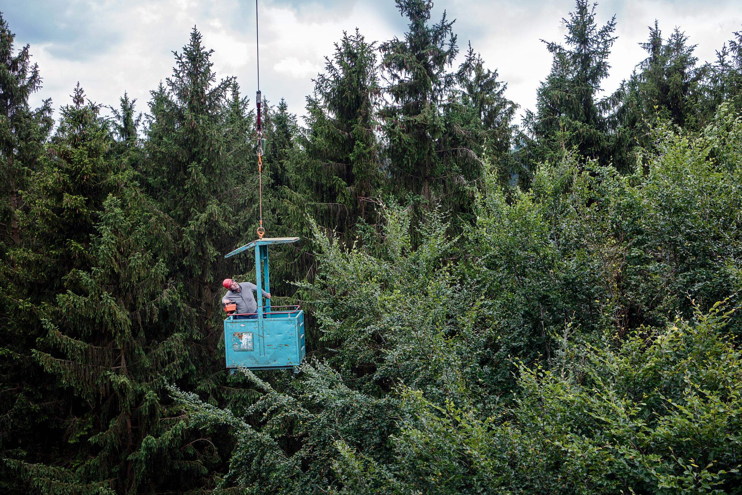 ZWISCHEN DEN WIPFELN Thorsten Gramsist auf dem Weg in die Wipfel des Kranzberger Forstes, wo ein Baukran die Erkundung der Baumkronen ermöglicht
