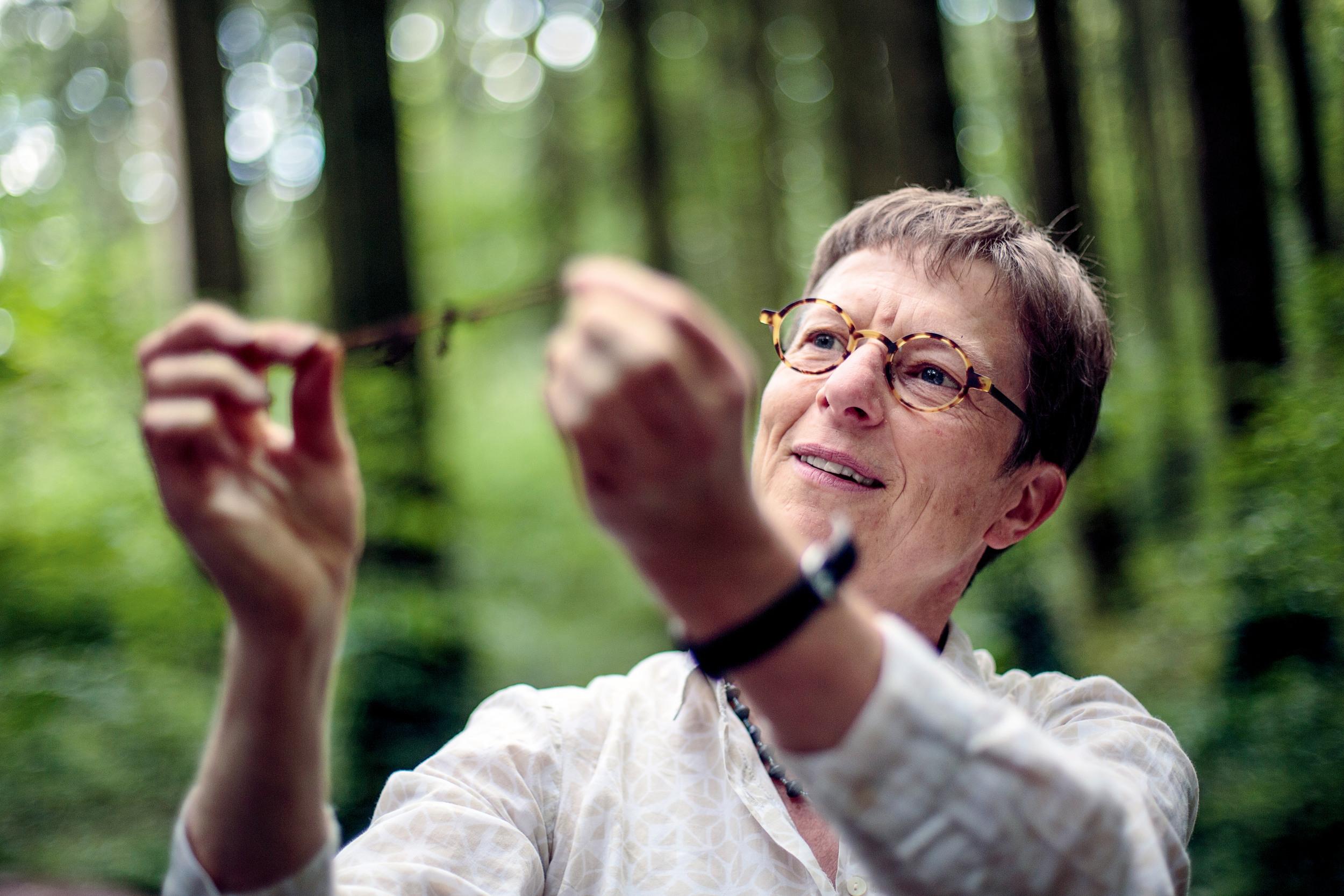 <p>PILZ-TEST<br /> Seine Kollegin Karin Pritschhat eine Fichtenwurzel ausgegraben, die von Pilzen umhüllt ist</p>