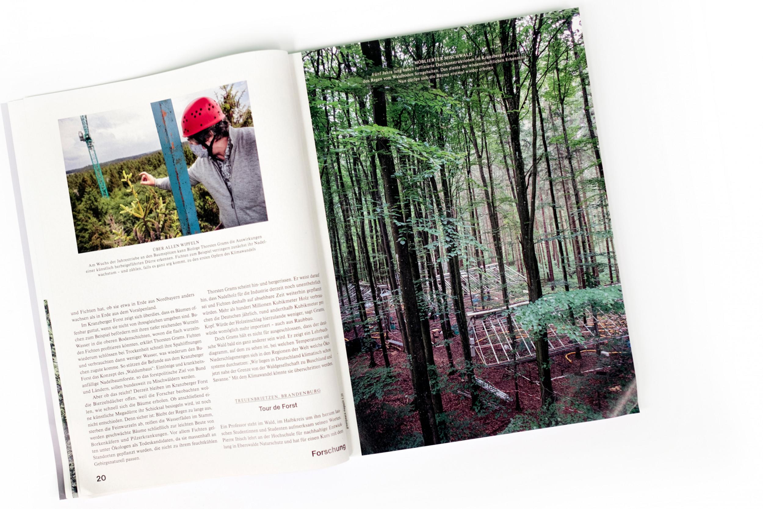 "<p>Reportage ""Die Zukunft des Waldes"", Greenpeace Magazin 5.20</p>"