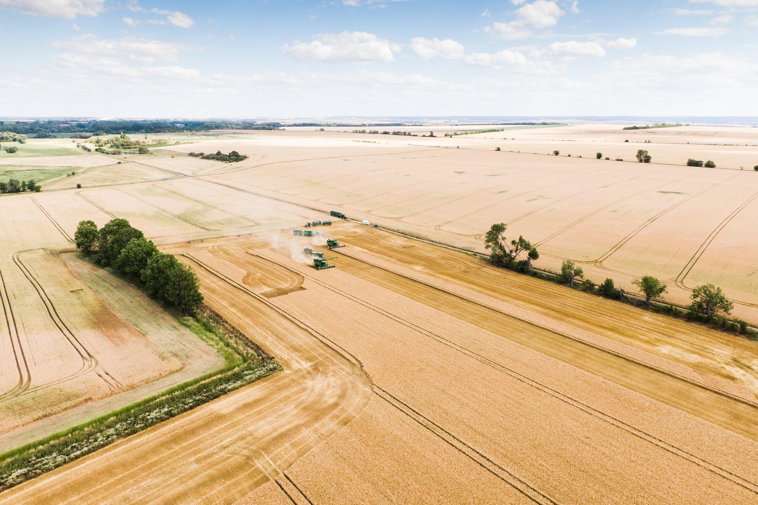 Masse statt Klasse – über die Zukunft der Landwirtschaft und der Subventionen in der EU wird auch 2021 heftig gestritten