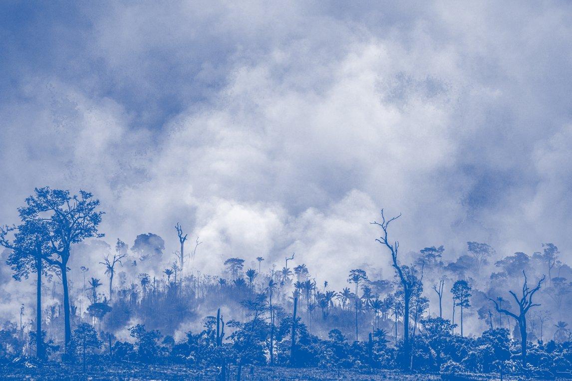 CO2-SCHLEUDER Bei Altamira, Brasilien, steht im August 2019 Urwald in Flammen.Bedroht sind nicht nur Tiere wie der Jaguar, sondern auch das Weltklima