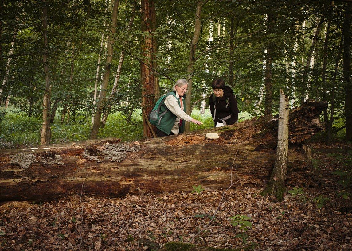 Gerlinde Straka und Katja Morgenthaler schauen sich einen Pilz genauer an