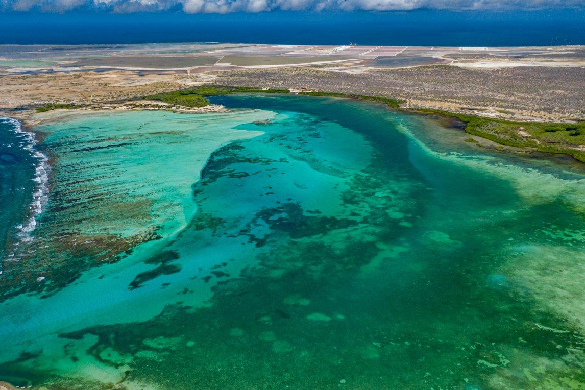 <p>GRÜNER GÜRTELDie Mangroven säumen das Ufer der Lac Bay, einer 700 Hektar großen Lagune im Südosten der Insel. Bonaire ist flach und sandig, im Inland erstreckt sich ein Kakteenwald</p>