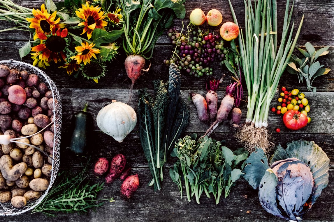 WUNDER DER NATUR Was uns alles geschenkt wird: süßes Obst, leckeres Gemüse, würzige Kräuter. Wie die Menschheit mit diesen Gaben umgeht, ist eine andere Geschichte