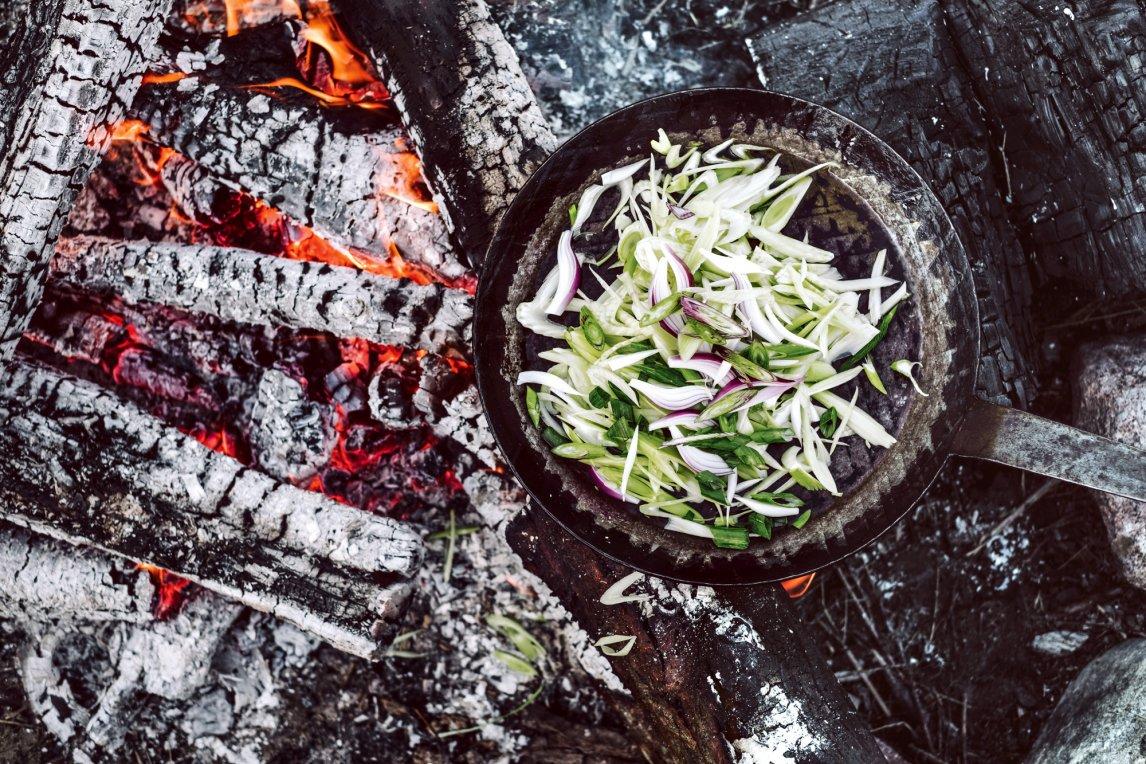 ALTE FLAMMEBevor Menschen das Feuer kontrollierten, kauten sie viele Stunden täglich harte Kost. Das Garen von Gemüse und Fleisch setzte Zeit und Energie für andere Dinge frei