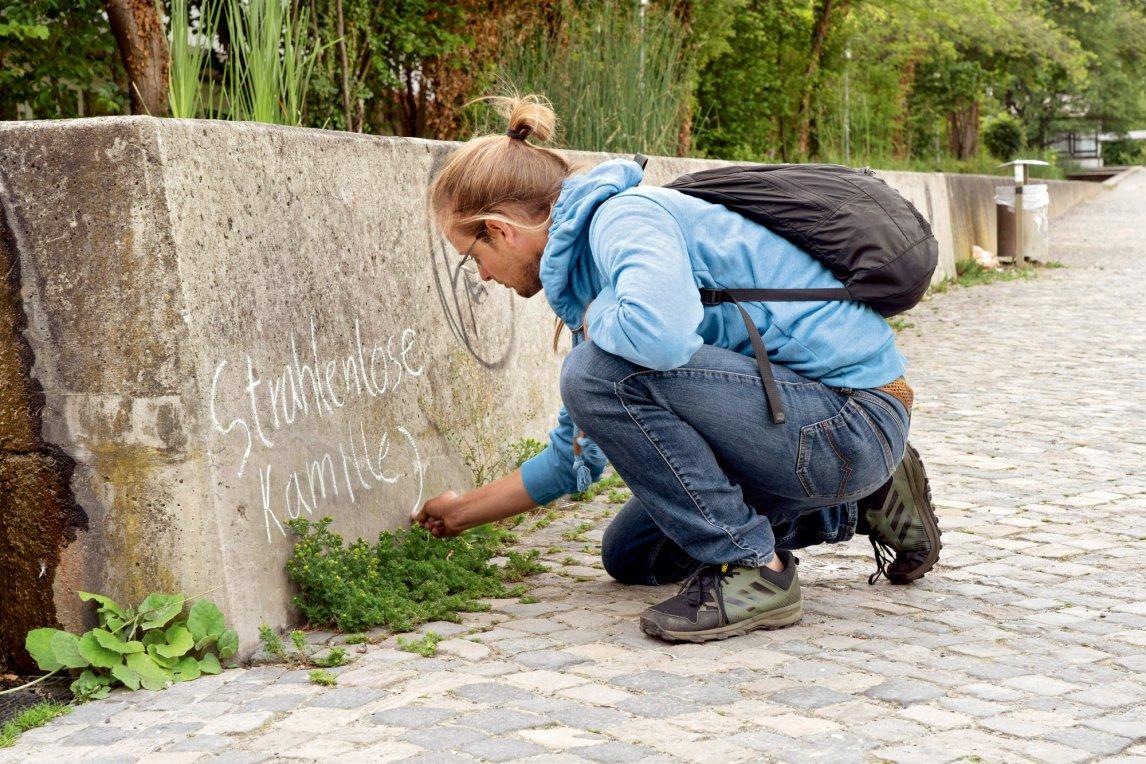 <p>VORSTELLUNGSRUNDE<br /> Biologe Fionn Pape holt unscheinbare Pflänzchen, die in seiner Heimatstadt Göttingen wachsen, aus der Anonymität. Die Hoffnung: Was man kennt, das schützt man eher</p>