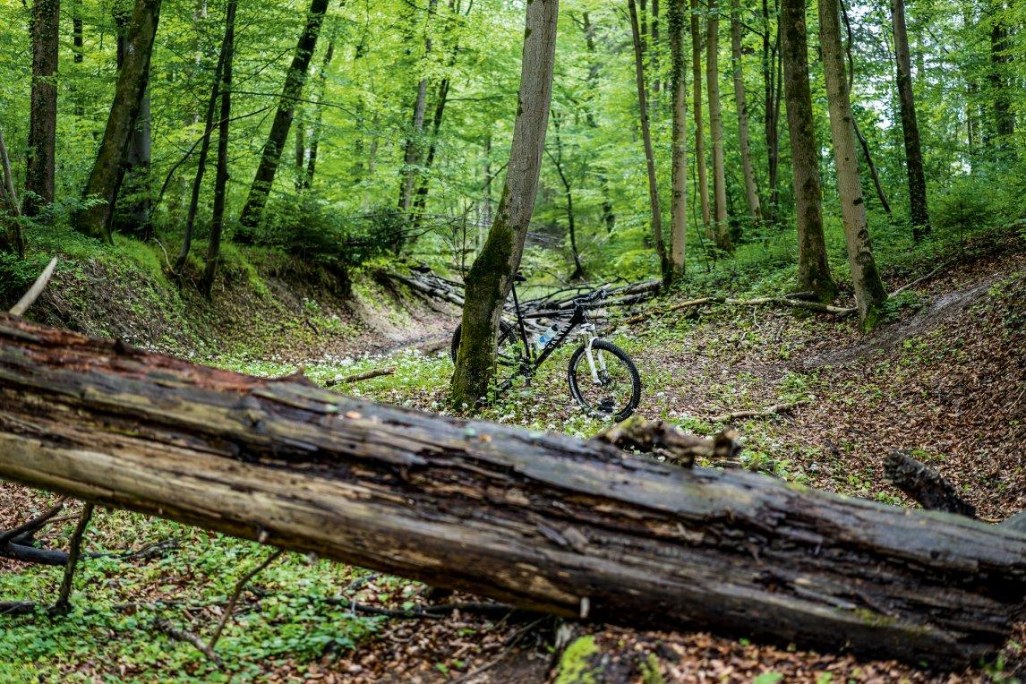 """<p class=""""text-align-center"""">DER BERG RUFT<br /> Allein in der Natur – so zeigt man sich gern auf Instagram, wie auf unserem Titelbildam bayerischen Eibseean der Zugspitze. Auch Mountainbiker schätzen die Waldeinsamkeit</p>"""